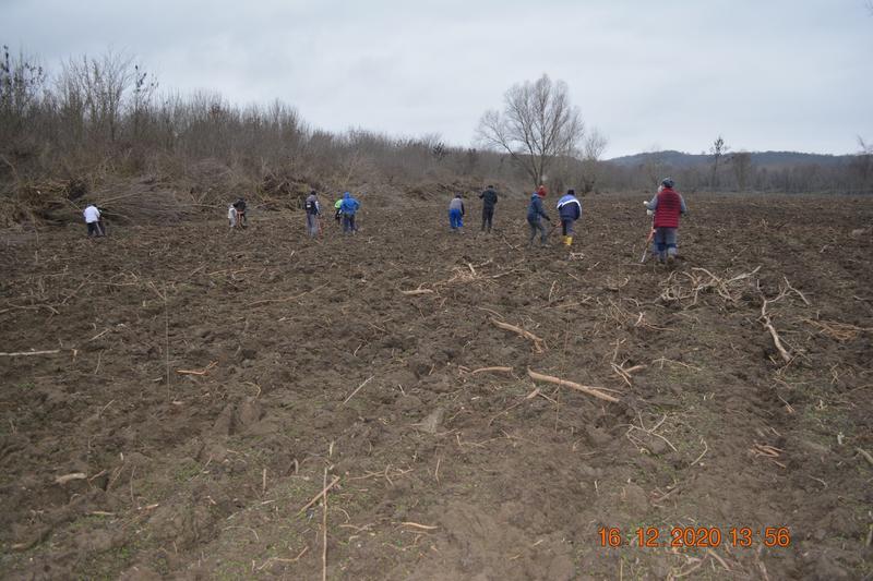 """Залесени са 217,1 дка горски площи в резервата """"Сребърна"""" - 01"""