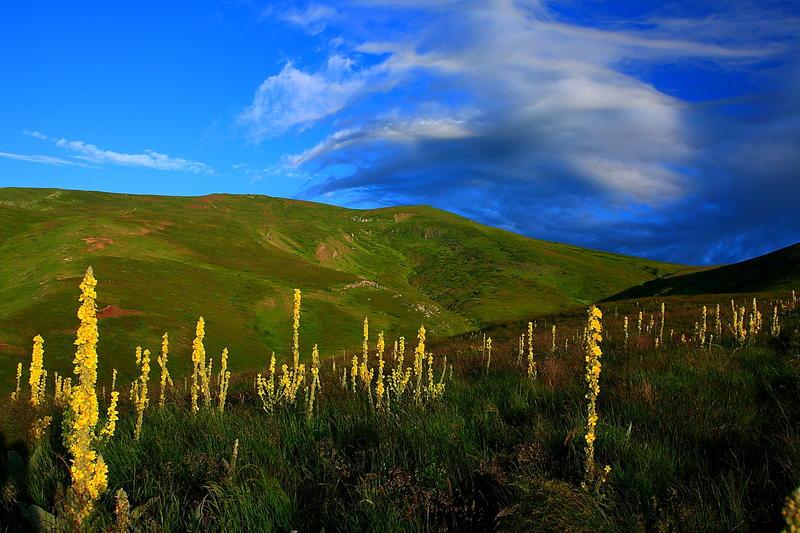 България вписва четири биосферни резервата по изискванията на ЮНЕСКО - 01